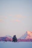 Vinterberg på en ljus solig dag Royaltyfria Foton
