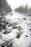Vinterbergflod. Royaltyfri Fotografi