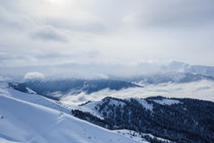 Vinterberglandskap med maxima som täckas med snö och skogen i molnen Royaltyfri Fotografi