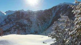 Vinterberglandskap på en solig dag Vertikal panorama längs de snöig granträden stock video