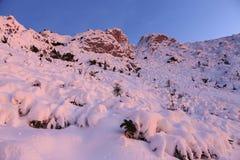 Vinterberglutning i solnedgång arkivfoton