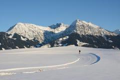 Vinterbergpanorama Arkivbilder