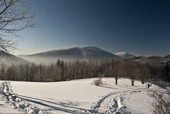 Vinterbergpanorama från Butoranka Arkivbild