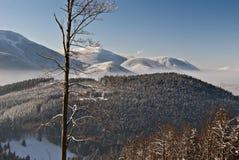 Vinterbergpanorama från Butoranka Royaltyfria Foton