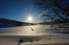 Vinterbergsoluppgång arkivfoto