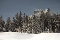 Vinterbris Arkivfoton