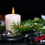 Vinterbrunnsortbegreppet av evergreen förgrena sig med droppar, snö, cand Arkivfoton