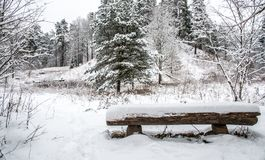 Vinterbygd Royaltyfri Foto