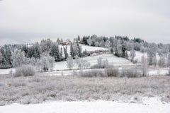 Vinterbygdlandskap arkivbild