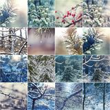 Vintercollage Royaltyfri Bild