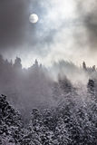 Vinterdag Royaltyfri Bild