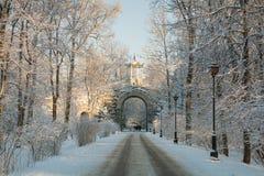 Vinterdag i Alexander Park Royaltyfri Bild
