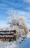 Vinterdag i landet Arkivbild