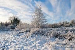 Vinterdag i landet Arkivfoto