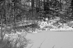 Vinterdammplats med bron arkivbild