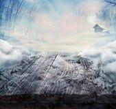 Vinterdesign - fryste trä bordlägger med landskap Arkivbild