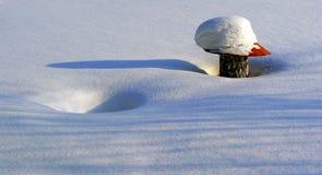Vinterdetaljer Arkivfoto