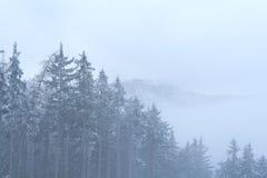 Vinterdimma i berg Royaltyfri Fotografi