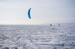 Vinterdrake Fotografering för Bildbyråer