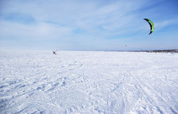 Vinterdrake Arkivfoto