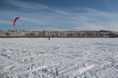 Vinterdrake Arkivfoton