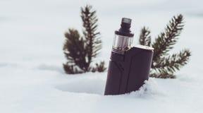 Vinterdunst med granfilialer Royaltyfri Foto