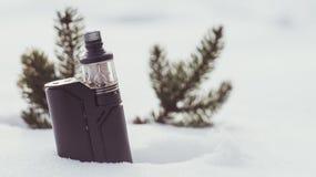 Vinterdunst med granfilialer Royaltyfri Fotografi