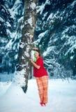 Vinterdvala Royaltyfri Fotografi