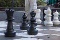 Vintereftermiddag som spelar jätte- schack i Hyde Park royaltyfri fotografi