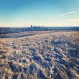 Vinterfältlandskap med i stadens centrum Calgary, Alberta höga löneförhöjningbyggnader i bakgrund Royaltyfria Foton