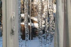 Vinterfönstret Royaltyfria Foton