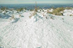 Vinterfläckar med överkanten av berget Arkivbild