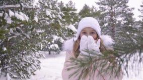 Vinterflicka som blåser på hennes händer, kallt väder snow Frost frysningen som är tonårs- modellerar Girl som går i vinter, park stock video