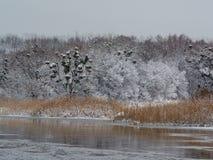 Vinterflod i morgon Arkivbilder