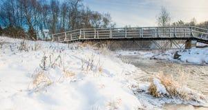 Vinterflod och bro Royaltyfria Bilder