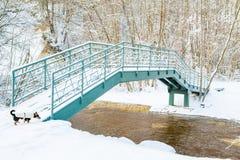 Vinterflod och bro Arkivfoton