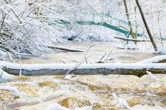 Vinterflod och bro Royaltyfria Foton