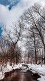 Vinterflod och trees Arkivbilder