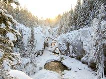 Vinterflodkanjon Arkivfoton