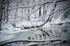Vinterflodreflexion Royaltyfria Foton