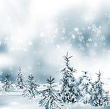 VinterForest Winter landskap Arkivbild