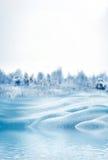 VinterForest Winter landskap Royaltyfri Fotografi