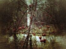 Vinterfrukt i en barontundra arkivfoton