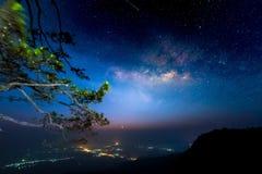 Vintergatan över sörjer träd Arkivbild