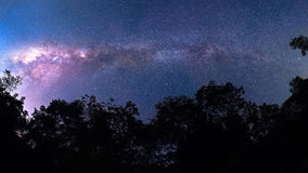 Vintergatan 180degree korsar över mest forrest, nationalparken THAIALND Arkivbild