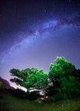 Vintergatan Härlig sommarnatt Royaltyfria Bilder