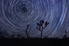Vintergatan i Joshua Tree National Park Royaltyfria Bilder