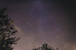 Vintergatan ovanför träd fotografering för bildbyråer