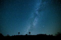 Vintergatangalax Arkivbild