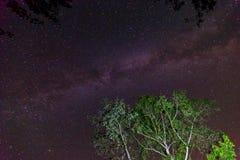 Vintergatangalax på nigh himmel Arkivfoto